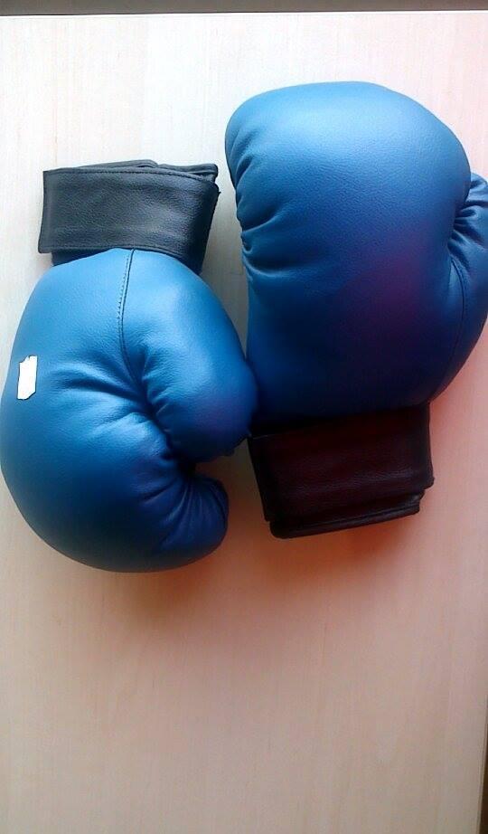 Боксови ръкавици 2420, кожа - L, HOS-B 4 - GR-PRO