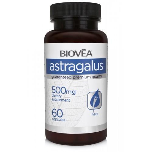 Biovea ASTRAGALUS 500mg