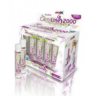 CarniLine® Pro Fitness 2000 / 10 x 25ml Amp.